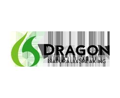 web designing course leicester dragon logo image